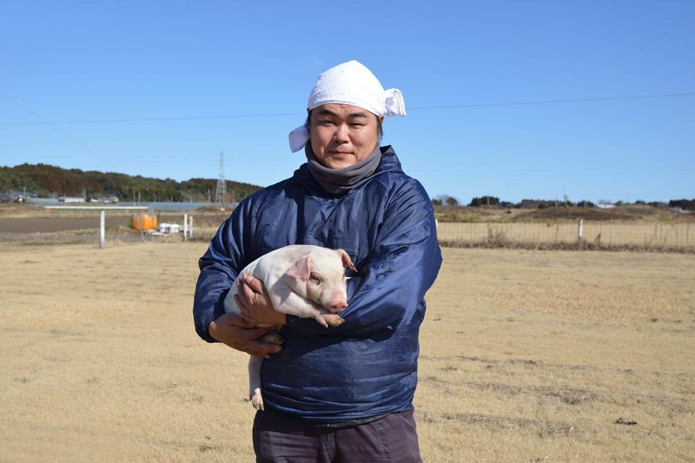 山豚の生産者の子豚がとてもかわいい