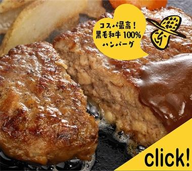 宮崎県産和牛100%ハンバーグ お徳用10個入り